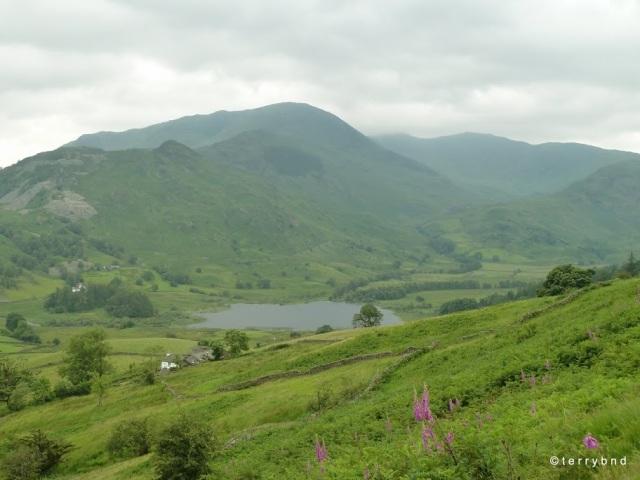 Wetherlam from Lingmoor Fell